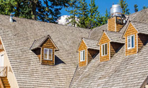 interative-box-cedar-roof